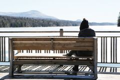 Person on Gray Jacket on Brown Wooden Bench Daytime Photo Stock Images