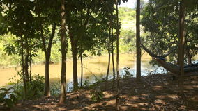 Person in Hammock in Shady Place under Trees on River Bank. Person in hammock in shady place under large tropical trees on small river bank against bright stock footage