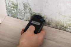 Person Hand Testing The Moldy-Muur stock afbeeldingen