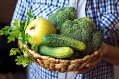 Person hands hold basket with green vegetables Stock Photography