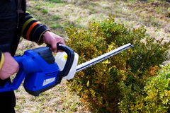 Person with hedge trimmer gardening Stock Photo
