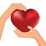 Person hold red heart in hand vector Royalty Free Stock Photos