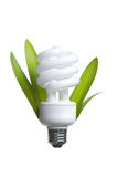 Person Holding A Modern Green Light Bulb Royalty Free Stock Images