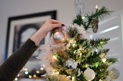 Person Holding Beige Bauble Near Christmas Tree Stock Photography