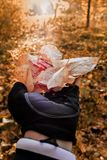 Person Holding Brown Leaves royalty free stock images