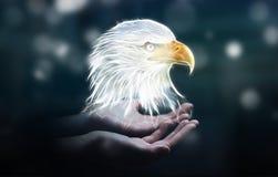 Person holding fractal endangered eagle illustration 3D renderin Royalty Free Stock Photography