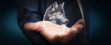 Person holding fractal endangered wolf illustration 3D rendering Stock Image