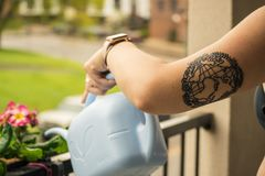 Person Holding Gray Plastic Watering Can Stock Photo