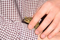 Person holding a green frog. Concept: the frog prince, people searching for an ideal relationship stock image