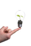 Person holding a green light bulb. Isolated on white Royalty Free Stock Photography