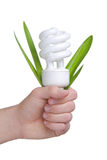 Person holding a modern green light bulb Royalty Free Stock Photo