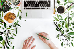 Person holding pencil and writing at workplace with laptop, cup of coffee, green leaves and office supplies Stock Photo