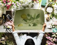 Person Holding Plant Painting Stock Photos