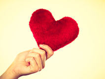 Person holding small furry heart, valentine gift Royalty Free Stock Images