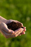 Person holding soil in hands Stock Images