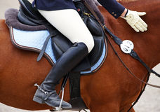 Person on horse in jodhpurs. Side view of legs of woman on brown show jumping horse in jodhpurs and riding boots Royalty Free Stock Photography