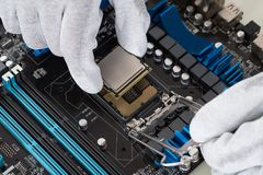 Person Installing Central Processor In Motherboard Royalty Free Stock Photography