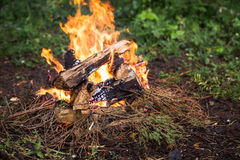Person kindles fire in the forest. Person warms himself by the fire in the forest. Hunter in the autumn forest Stock Photography