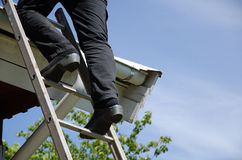 Person on ladder with clogs Royalty Free Stock Image