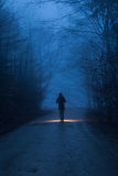 A person with light in forest in night Stock Photography