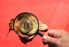 Person looking through a magnifying glass on bitcoin stock images