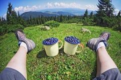 Person med koppblåbär, medan se på bakgrund av den soliga berggrässkogen och kullar arkivfoton