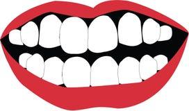 Person Mouth Immagine Stock