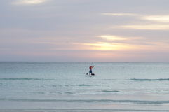 Person paddle boarding during sunset Stock Image
