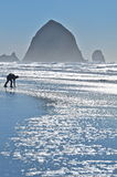 Person playing on Cannon beach. Scenic view of silhouetted person playing on beach at twilight with rock formations in background, Oregon, U.S.A Stock Photography