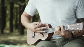 Person playing on little ukulele guitar. Crop shot of man holding and playing on little acoustic ukulele guitar sitting in the outdoor park stock footage