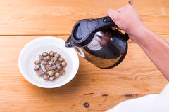 Person pouring boiling water over cockles in bowl Royalty Free Stock Images