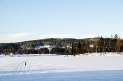 A person practicing ski on the frozen lake of Bogstadvannet in Oslo Norway stock images