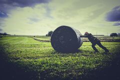Person Pushing Gray Roll on Green Grass Royalty Free Stock Photography