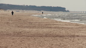 Person recreation nordic walking on the beach in Palanga, Lithuania. stock footage