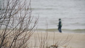 Person recreation nordic walking on the beach in Palanga, Lithuania. Man goes with Nordic walking sticks along the seashore, Palanga, Lithuania stock video