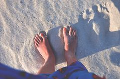 Person With Red Pedicure Standing on White Sand Stock Photos