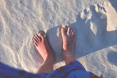 Person With Red Pedicure Standing on White Sand Stock Photography