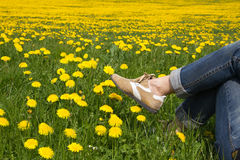 Person relaxing in a spring meadow Stock Images