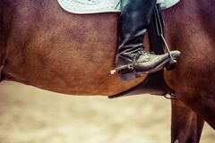 Person Riding Brown Horse Put His Feet on Horse Saddle Stock Image