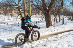 A person is riding a fat tire snow bike in Winter. Royalty Free Stock Image