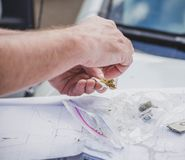 Person Rolling a Cannabis Joint Outdoors. Close up of person`s hands rolling a joint with marijuana cannabis and rice paper on top of a car hood. Travel map stock images