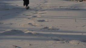 Person Running Through Sand och smuts arkivfilmer