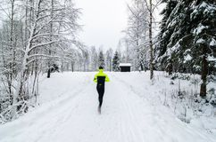 A person running in a snow covered forest. royalty free stock photos