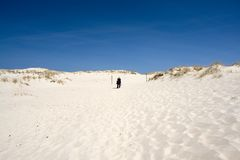 Person on Sand Dunes. Person walking up sandy hill, bright blue sky overhead Royalty Free Stock Photo