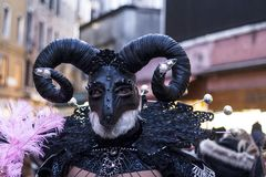 Satyr Carnival mask. Person in a Satyr Carnival mask in Venice Royalty Free Stock Image