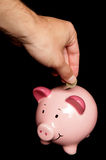 Person saving money in piggy bank. Person putting one pound into piggy bank Stock Photo