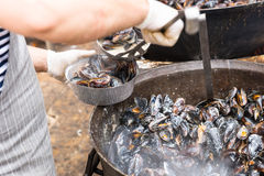 Person Serving Prepared Mussels from Large Pot Royalty Free Stock Image