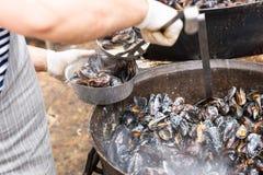 Person Serving Prepared Mussels van Grote Pot royalty-vrije stock afbeelding