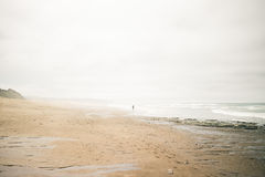 Person on Shore Line Beside Body of Water Under White and Grey Sky during Daytime Royalty Free Stock Image