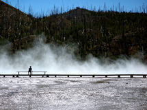 Person Silhouettted Against Mist. Person silhouetted against mist of Grand Prismatic Hot Spring in Yellowstone National Park, Wyoming stock images